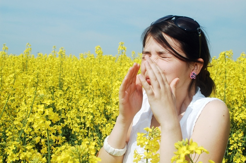 Combat Allergy Symptoms With These 7 Simple Ideas